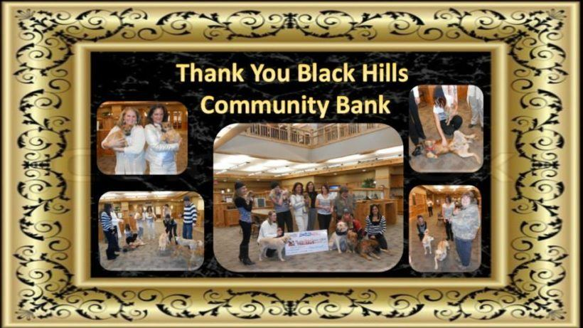 thank you to black hills community bank
