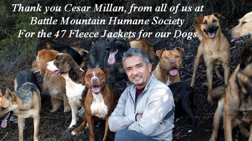 thank you Cesar Millan