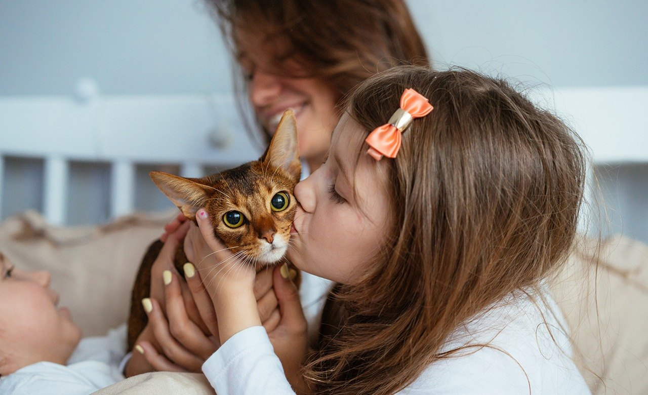 young girl kissing kitten